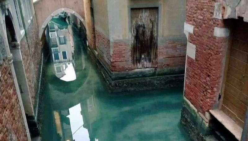 Паника от коронавируса удивительно преобразила Венецию