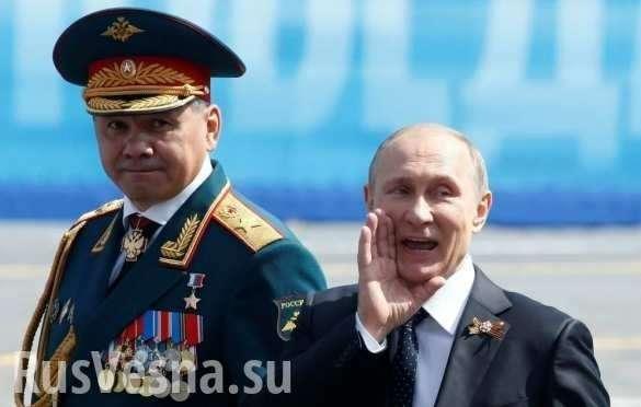 «Гуманитарный топор» в грудь НАТО – почему Шойгу всё сделал вовремя и правильно | Русская весна
