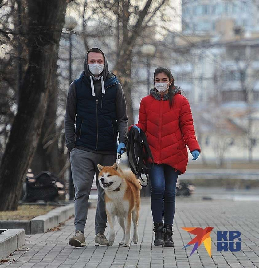 Разрешено гулять с домашними животными на расстоянии не более 100 метров от дома Фото: Алексей БУЛАТОВ
