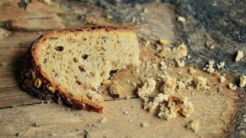 Коронавирус: пандемия здравого смысла. Будет ли у нас хлеб на столе?