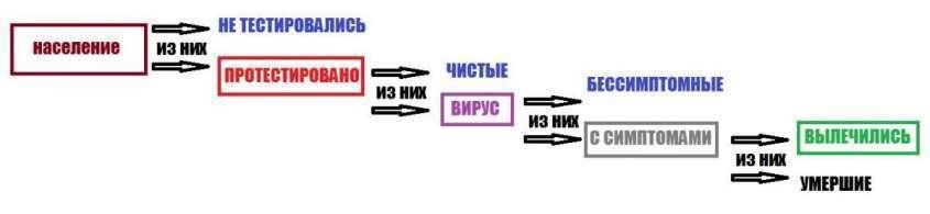 Почему Россия попала в число лидеров по количеству инфицированных коронавирусом?