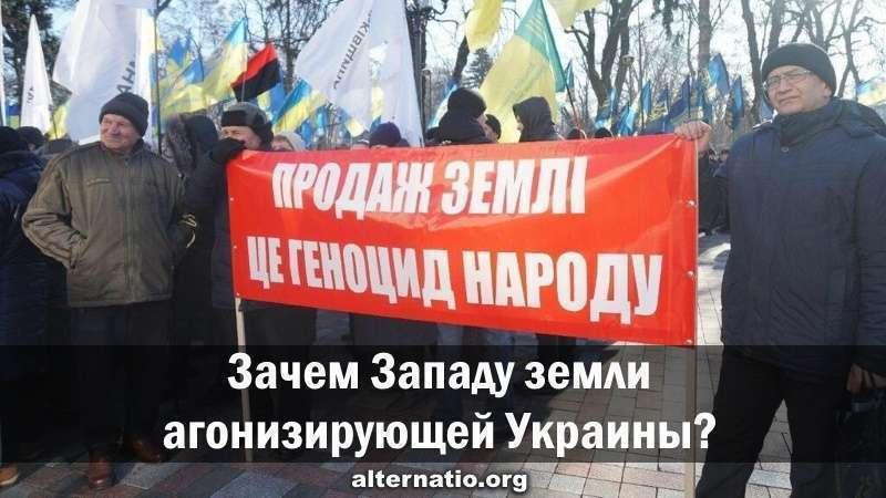 Зачем паразитическому Западу чернозёмы агонизирующей Украины?