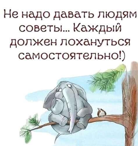 http://ru-an.info/Photo/QNews/n94440/2.jpg