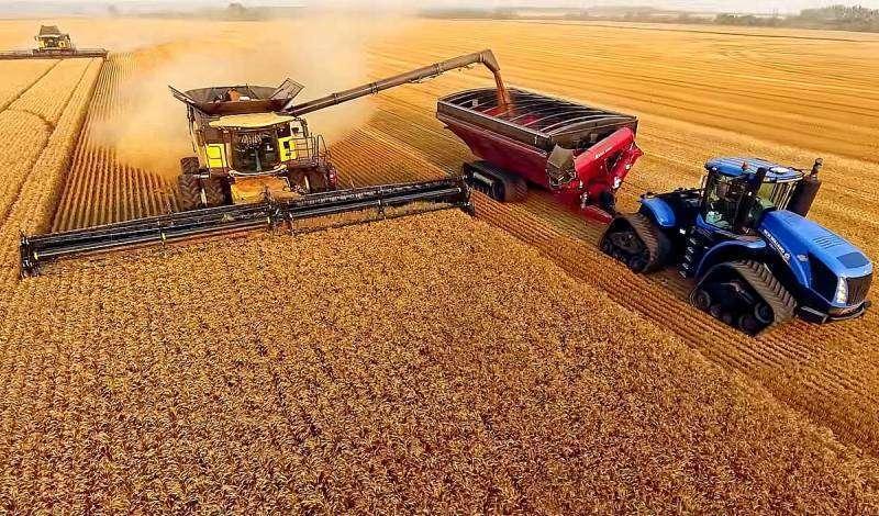 Чем обусловлен запрет на экспорт русской пшеницы?