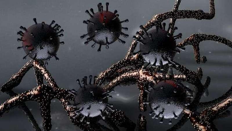 Коронавирус в Париже не связан с коронавирусом в Ухане. Как такое возможно при «пандемии»?