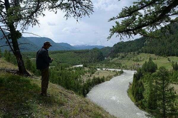 Река Аргут в Кош-Агачском районе Республики Алтай
