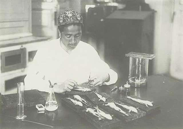 Аспирант за работой (кафедра фармакологии САМИ) Узбекская ССР. 1935