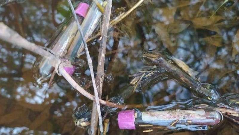 На берегу Вятки обнаружили свалку пробирок с кровью и других медицинских отходов