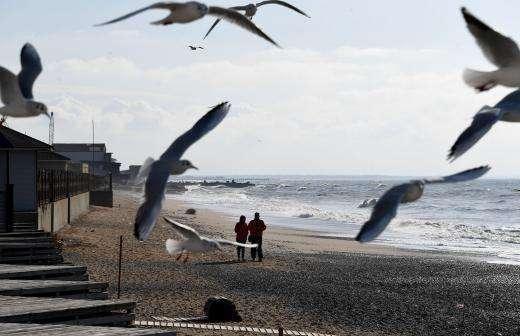 Зарубежный отдых 2020 в пролёте: россияне хотят отдыхать на родине