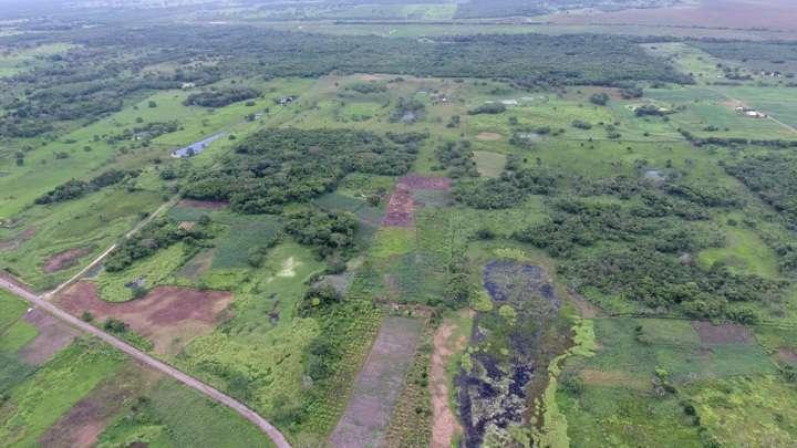 Новые раскопки в Мексике заставляют пересмотреть официальную версию истории этой цивилизации