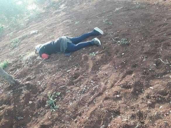 Сирия: протурецкие боевики безнаказанно насилуют и убивают юных девушек   Русская весна