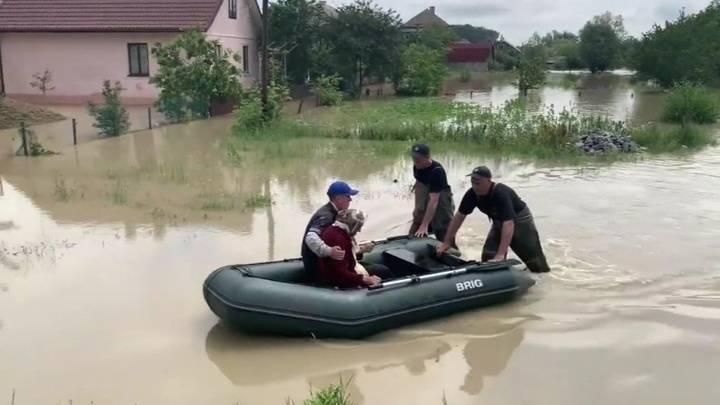 Дикая вырубка леса в Карпатах привела с сильнейшим наводнениям на западе Украины