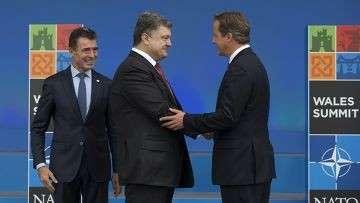 Беспощадная война на Украине. «Последнее наступление» НАТО.