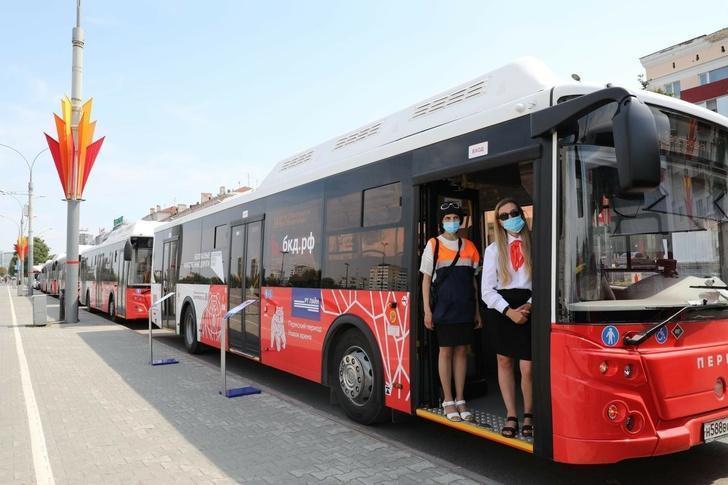 Пермский край первым в стране получил новые автобусы в рамках дорожного нацпроекта