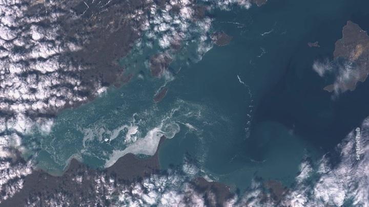 «Цветущий» Северный Ледовитый океан– такого вы еще не видели