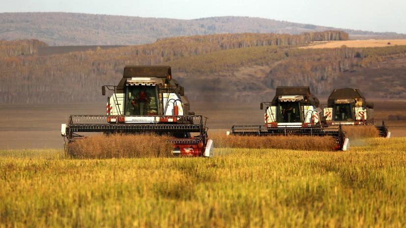 Импортозамещение: Россия за шесть лет снизила импорт продовольствия на треть