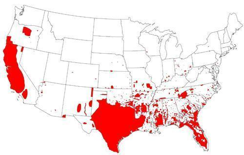 Геноцид странствующих голубей, завоевание США свиньями и причины заката эпохи доллара