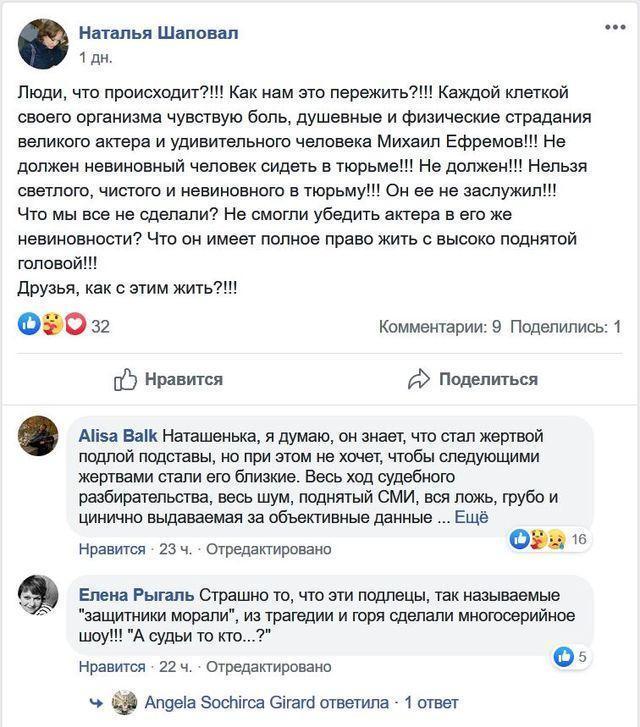 Нибиру атакует – о добровольных защитниках Михаила Ефремова