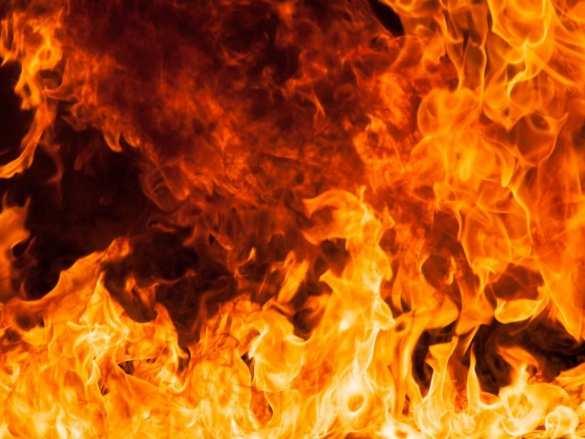 В Краснодаре гуляла свадьба, пускала фейерверки, и вот результат: 90 квартир выгорело | Русская весна