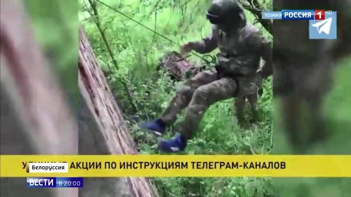 Демократизация Белоруссии: оппозиция просит денег у ЕС, в гомельских лесах тренируются неонацисты