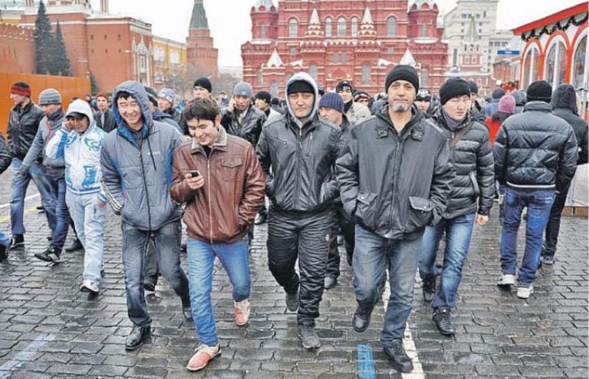 Мечта Голиковой: мигранты с Ближнего Востока попросили коренных шведов покинуть страну