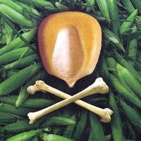 Внедрение ГМО